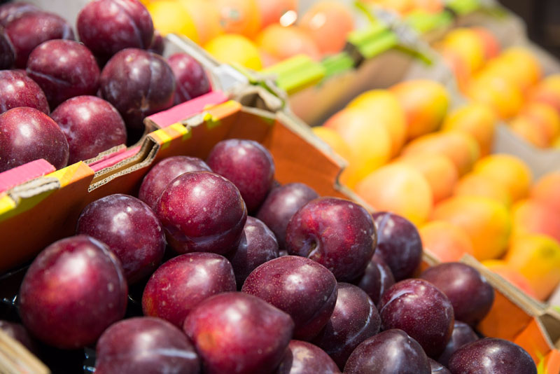 plum_fruit_vegetable_supplier_sydney